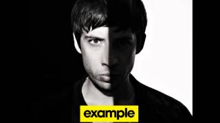 Example-Never had a day(High quality)