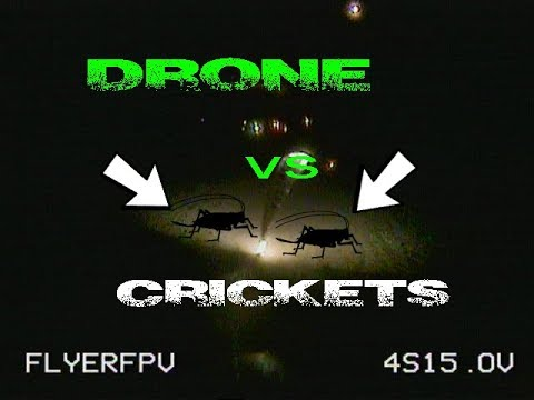 How to Catch Crickets With Drone At Night  Led Strip