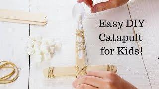 Easy DIY Catapult For Kids