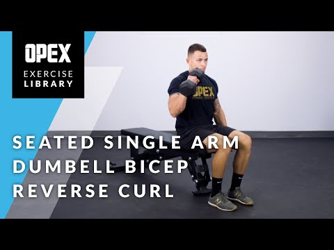 Seated Single Arm Dumbbell Bicep Reverse Curl - OPEX Exercise Library