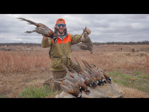 My First Time Hunting Pheasant Quail and Chukar All in One Day!