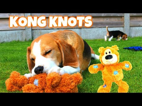 "Funny Dog Toy Critics ""Louie and Marie"" Episode #8 : KONG WILD KNOTS"