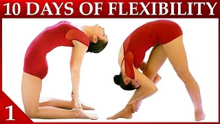 10 Day Flexibility Challenge Day 1 – Basic Stretches & Warmup Workout Dance with Catherine