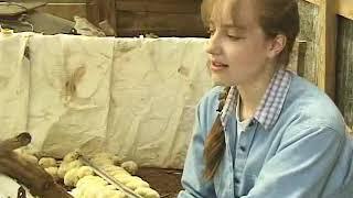 Joel Salatin - Polyface farm