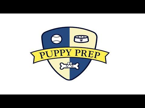 Puppy Prep - Trailer