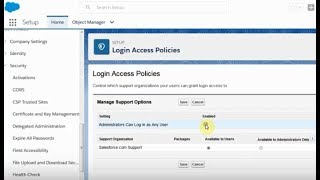 Salesforce: Admin Setup Login as User in Lightning