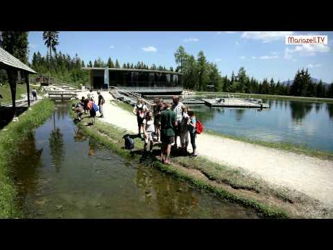 Mariazeller Bürgeralpe - Erlebnisberg und Ausflugsziel - Sommer und Winter!
