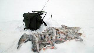 Зимняя рыбалка на ямале