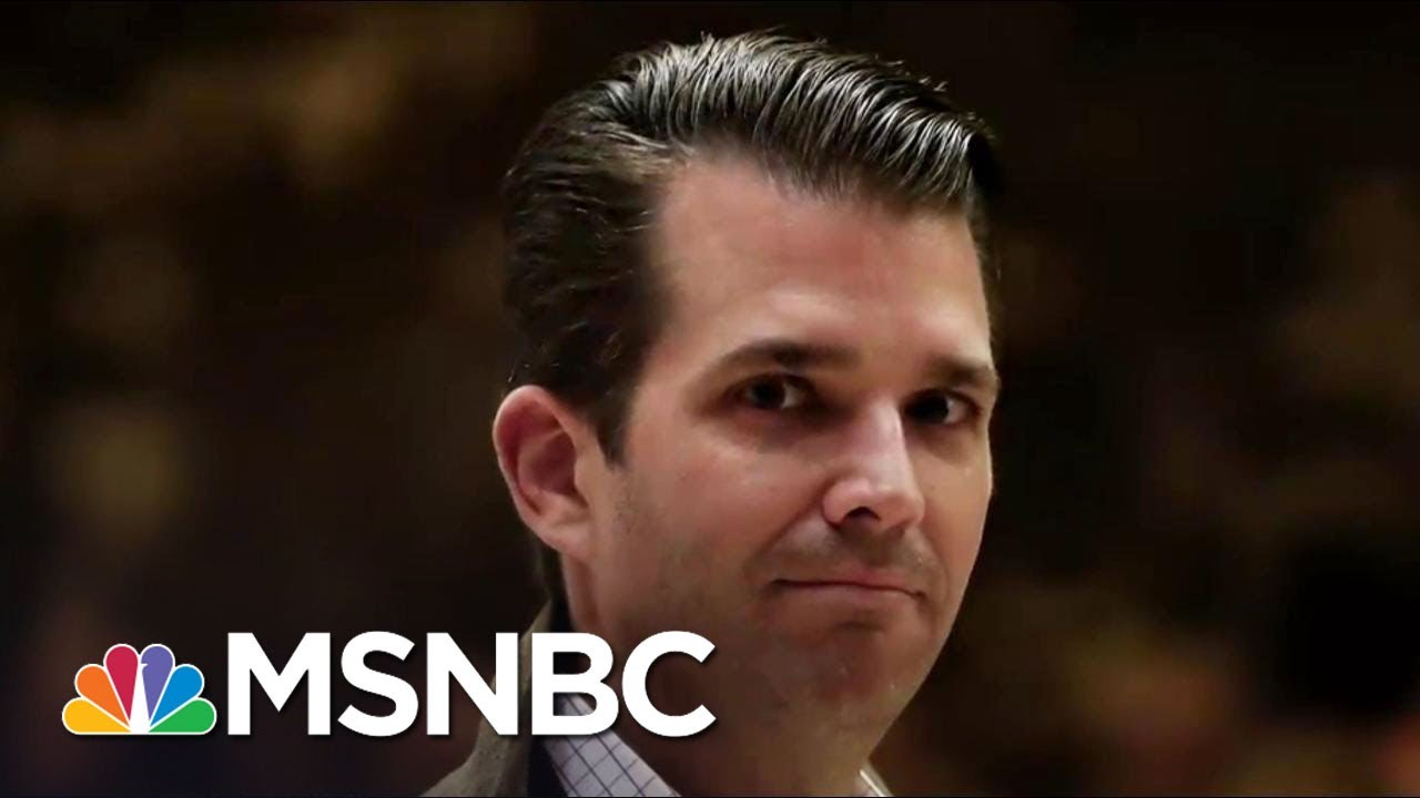 Who Is Leaking Damaging Information On Donald Trump's Oldest Son? | The 11th Hour | MSNBC thumbnail