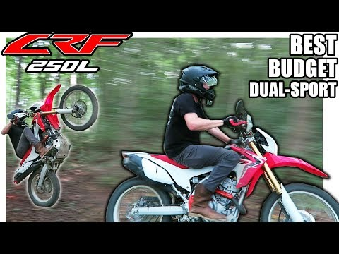 The Most UNDERRATED Dual Sport / Supermoto | CRF250L First Ride & Review