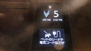 【ボタン注目:豪華仕様】神戸市三宮町内某ビルのエレベーター(三菱製)