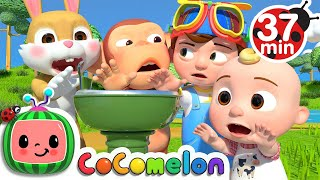 Wait Your Turn + More Nursery Rhymes & Kids Songs - CoComelon
