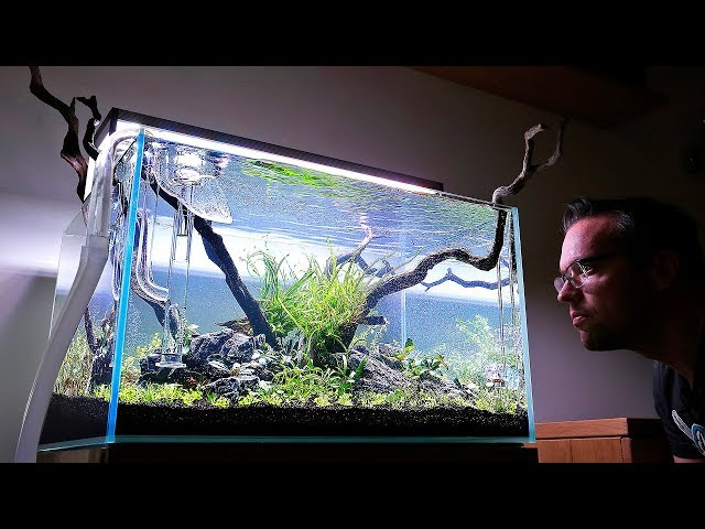 How to set up a Nature Aquarium - Steven's Aquascaper 600