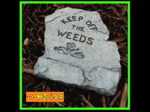 Keep off the Weeds