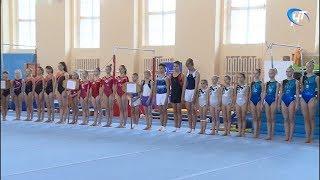 В «Манеже» открылись юниорские соревнования по спортивной гимнастике