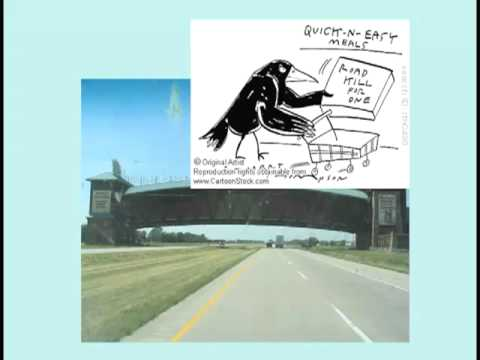 West Nile Story (Lecture 26) w/ Dickson Despommier