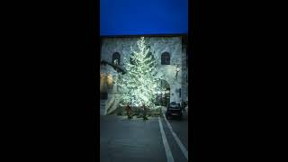 Assisi 2018