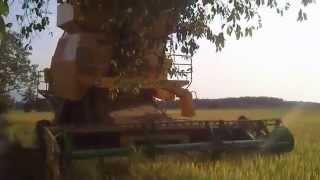 Mesin Padi 1545-S Di Pokok Tampang (Rabu 29/1/2014)