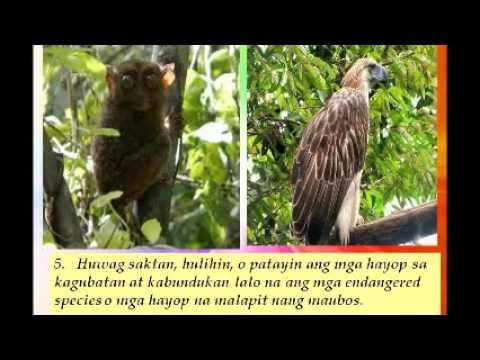 Healing mula sa kuko halamang-singaw