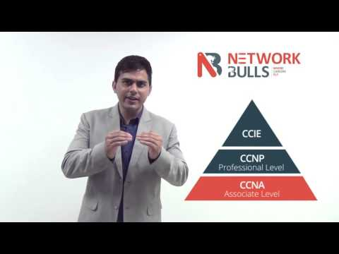 How to become Network Administrator by taking CCNA, CCNP and ...
