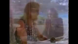 DEF LEPPARD MISS YOU IN A HEART BEAT VIDEO DVD B
