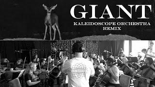 Giant   Kaleidoscope Orchestra Remix [Calvin Harris, Rag 'n' Bone Man]