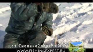Отчеты о рыбалке озеро смолино форум