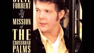 Steve Forbert-How Can You Change The World?
