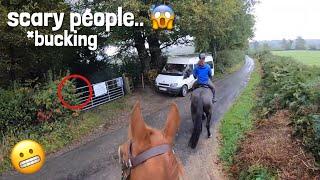 horses bucking & he was lame?! | GOPRO | equinemollie