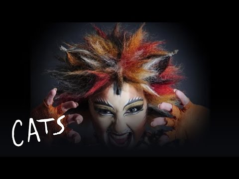 Cats spectacle musical au théâtre Mogador à Paris