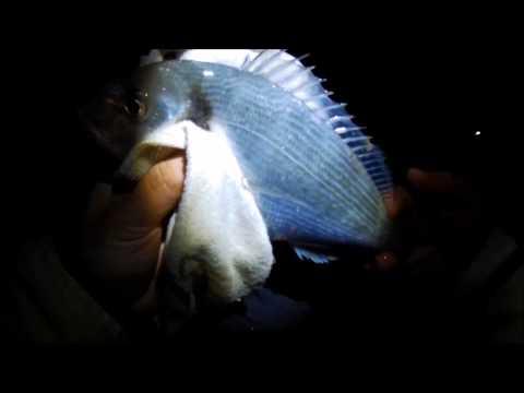 Tende invernali per cubo video da pesca