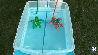 Bricolage et course de tortues