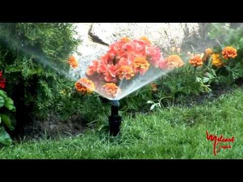 Riego para un jardín perfecto