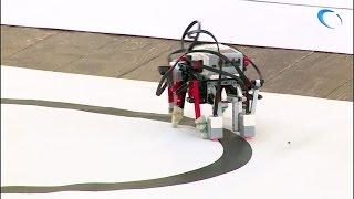 Состязания по робототехнике собрали более 200 школьников