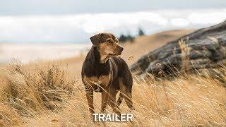 Die unglaublichen Abenteuer von Bella Film Trailer