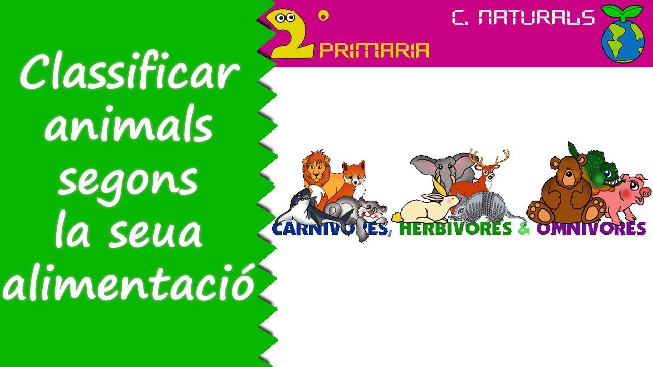 Ciències de la Naturalesa. 2n Primària. Tema 4. Classifiquem els animals segons la seua alimentació