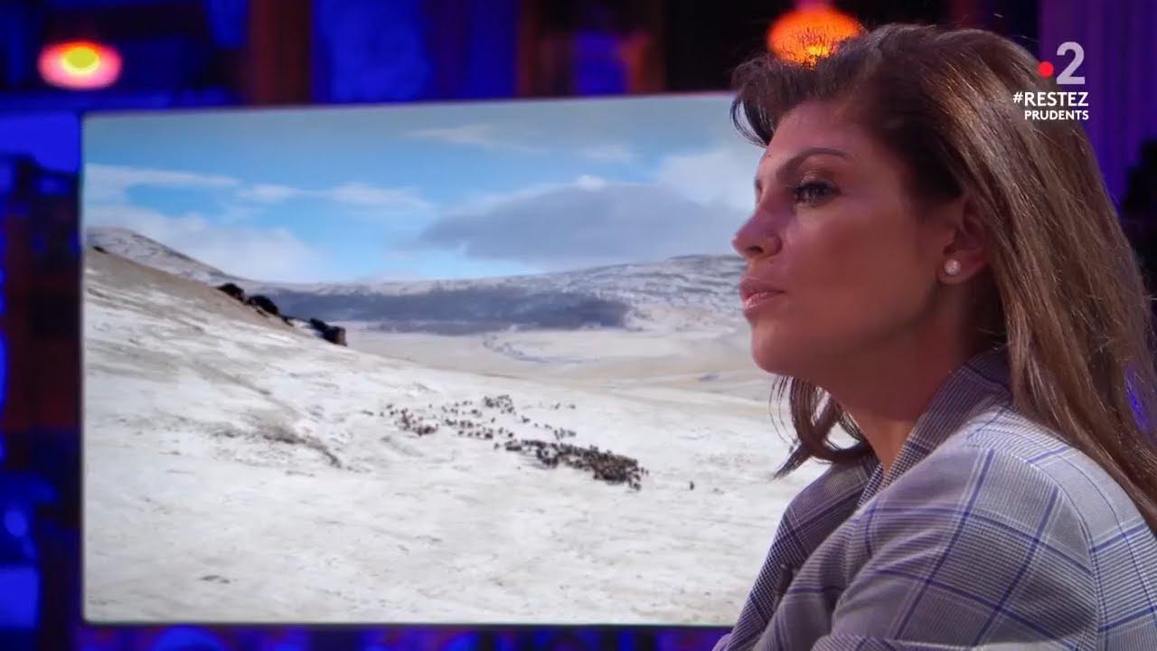 Retour de terre inconnue - Nawell Madani chez les éleveurs de yacks de Mongolie - 26/05/2020