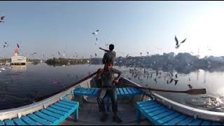 360° Of The Week: Migratory Birds In Delhi