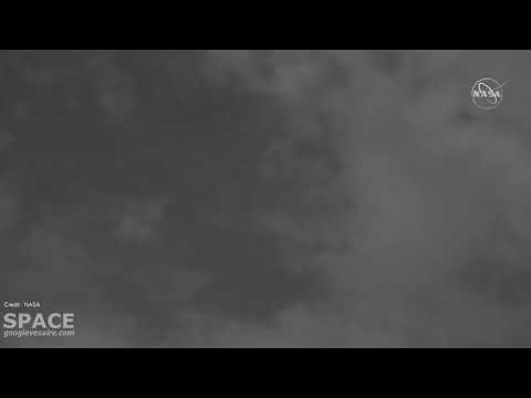 NASA  Live stream of the annual Perseids meteor shower.
