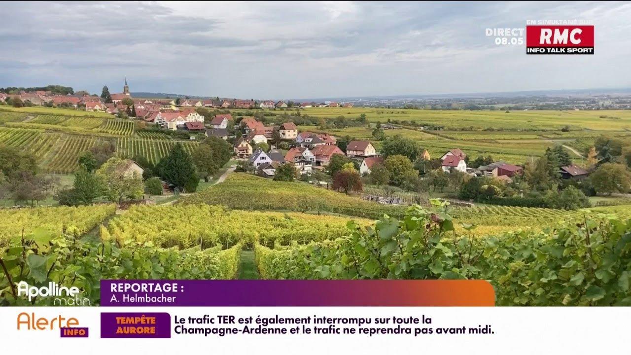 L'Alsace attire du monde pour les vacances de la Toussaint