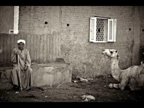 De kamelenmarkt