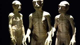 What you need to know about the ALIEN RACES visiting earth and living among us