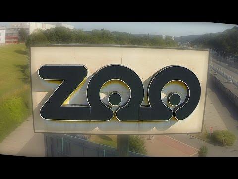 e2c083916 VIDEO: Pohľad do tajov prírody. Bratislavská ZOO má vskutku čo ...