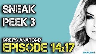 Sneak Peek n°3