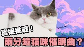 Lullaby For A Cat - 寶妮挑戰韓國貓咪催眠曲 에픽하이(Epik High)  challenge