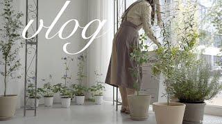 ENG / Flower Shop Vlog | #8 봄맞이 식물 식재하기, Planting Plants