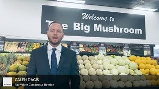 Calen Dagis interview with The Big Mushroom Fruit Barn