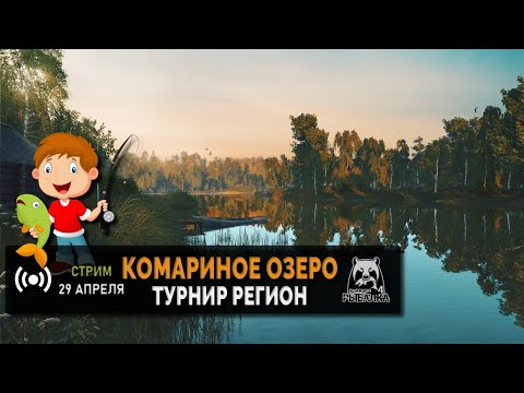 "Форумный турнир ""регион"""