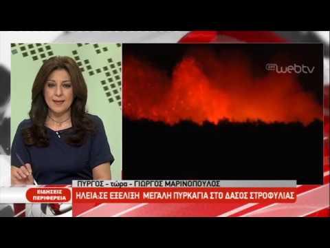 Ηλεία: Μεγάλη πυρκαγιά στο δάσος ΣΤΡΟΦΥΛΙΑΣ| 02/04/2019 | ΕΡΤ