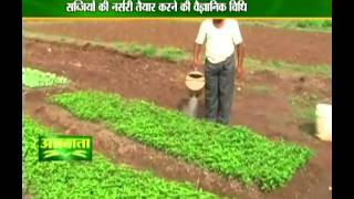 Learn how to prepare nursery for vegetables